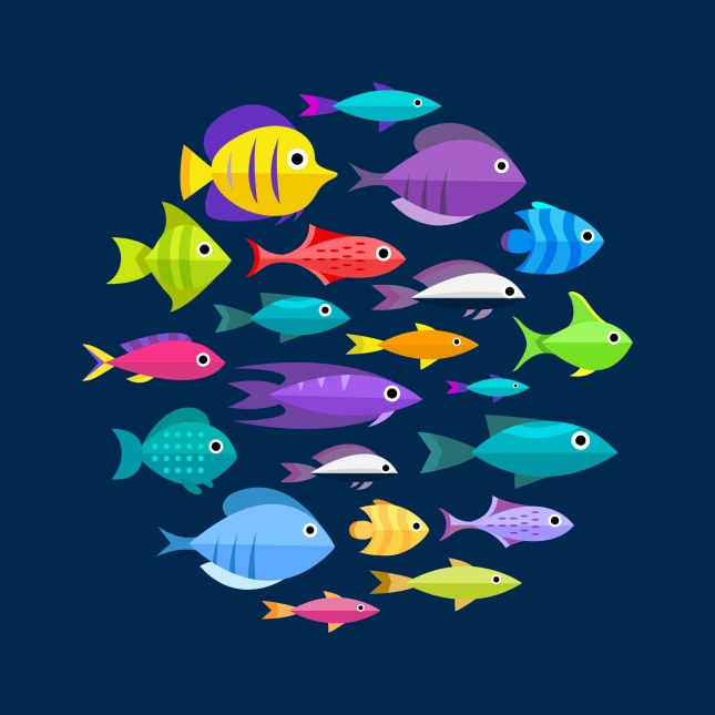 fishes-swimming-together